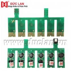 Bộ chip máy in liên tục Epson R290  (C,M,Y,BK,LC,LM)