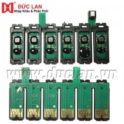 Bộ chip máy in liên tục Epson T60/1390 (851NR)  (C,M,Y,BK,LC,LM)
